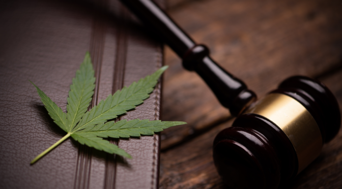 In the Market for Cannabis Counsel? Don't Pay Your Lawyers to Learn on the Job!